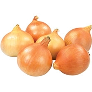 Picture of Onion Pack 10kg