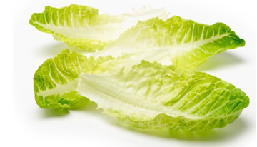 Picture of Cos Leaf Lettuce Pack 130g
