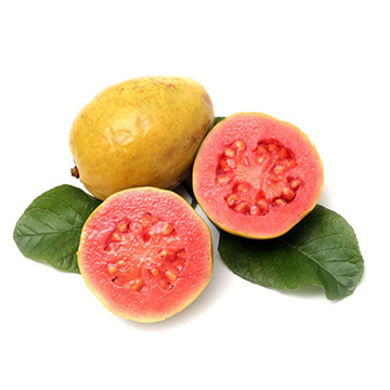 Picture of Guava 750g