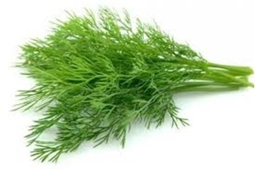 Picture of Dill Herbs Pack 250g