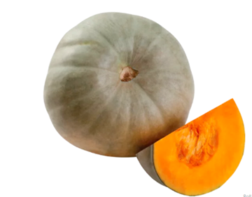 Picture of Blue Queen Pumpkin (+-4kg) head