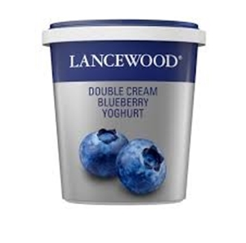 Picture of Lancewood Blueberry Double Cream Yoghurt 1kg